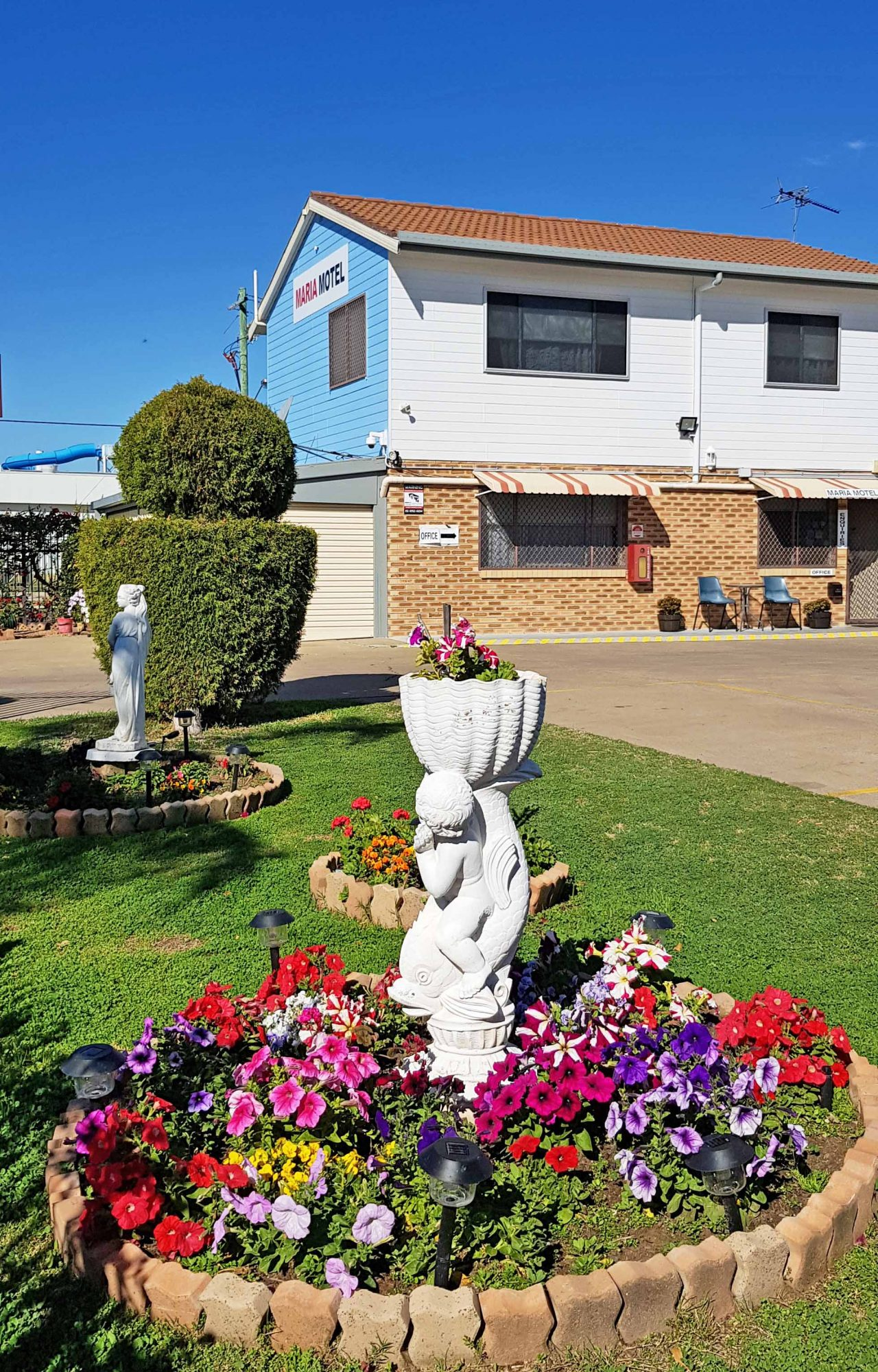 maria motel garden with mixture of colorful flowers
